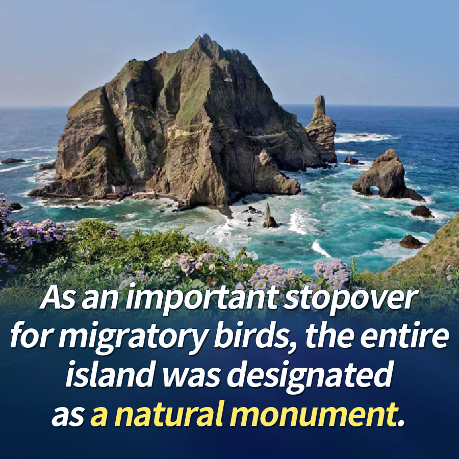 As an important stopover for migratory birds, the entire island was designated as a natural monument.