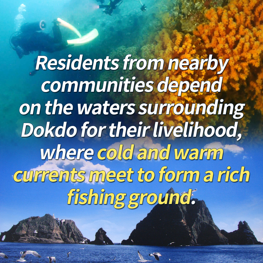 Residents from nearby communities depend on the waters surrounding Dokdo for their livelihood, where cold and warm currents meet to form a rich fishing ground.