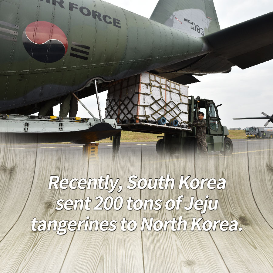 Recently, South Korea sent 200 tons of Jeju tangerines to North Korea.