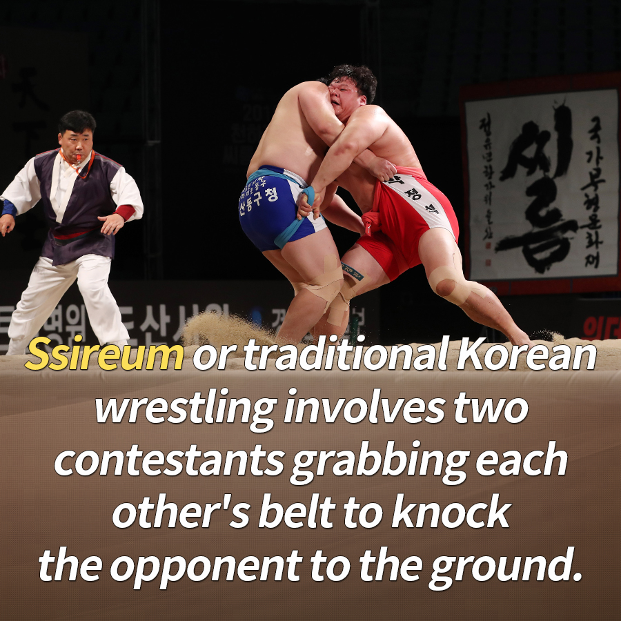 Ssireum or traditional Korean wrestling involves two contestants grabbing each other's belt to knock the opponent to the ground.