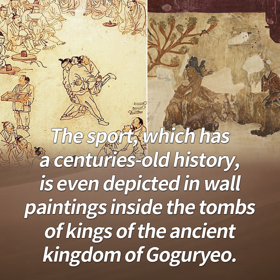 The sport, which has a centuries-old history, is even depicted in wall paintings inside the tombs of kings of the ancient kingdom of Goguryeo.