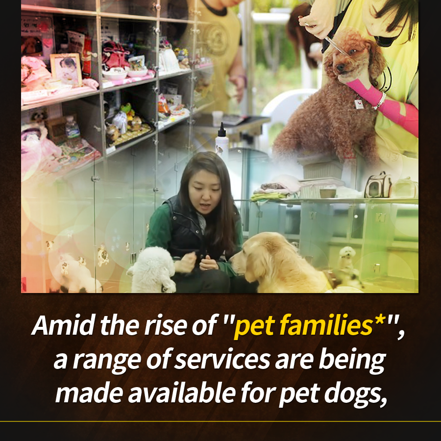 "Amid the rise of ""pet families*,"" a range of services are being made available for pet dogs,"