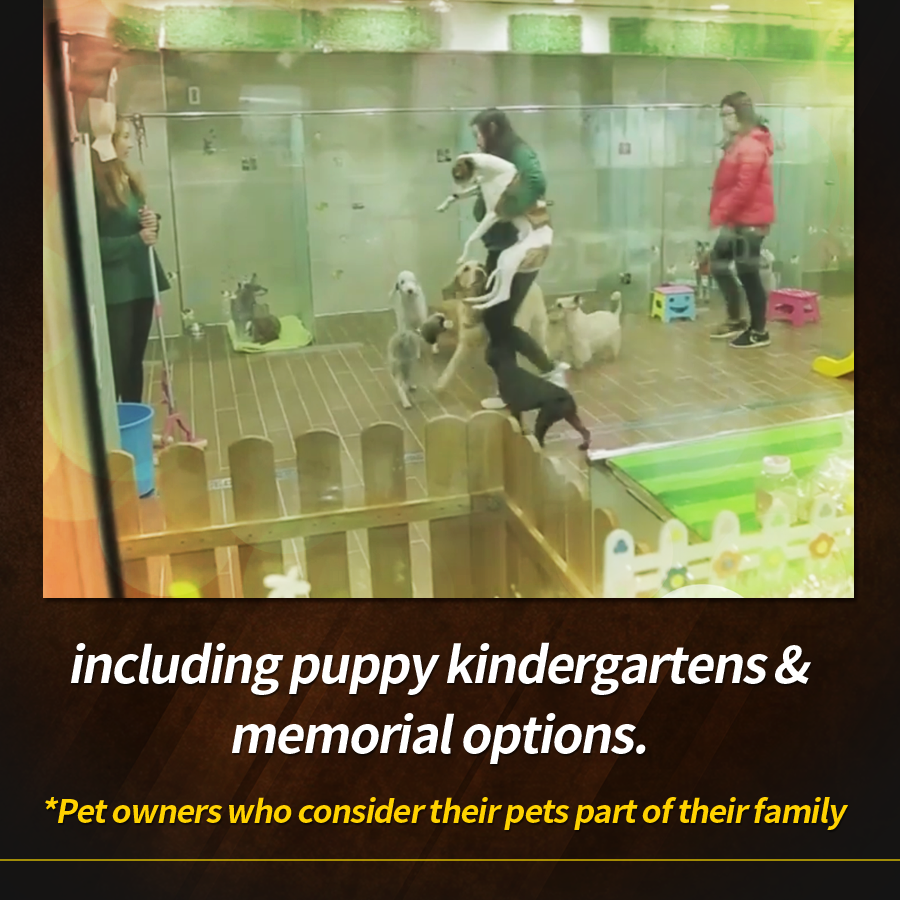 including puppy kindergartens & memorial options.<br>