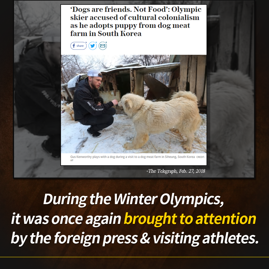 During the Winter Olympics, it was once again brought to attention by the foreign press & visiting athletes.