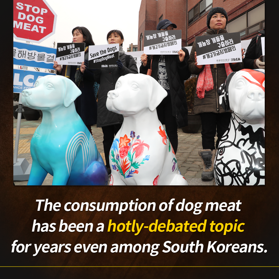 The consumption of dog meat has been a hotly-debated topic for years even among South Koreans.