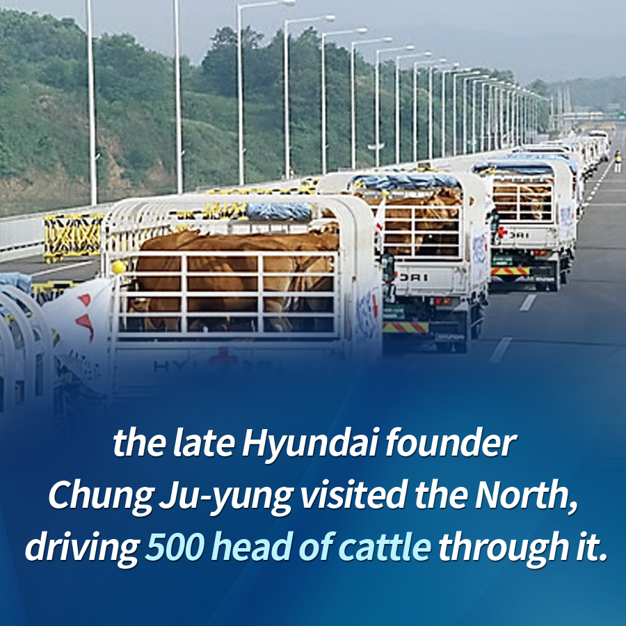 the late Hyundai founder Chung Ju-yung visited the North, driving 500 head of cattle through it.