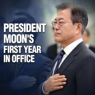 President Moon's First Year in Office