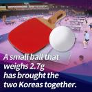 Two Koreas Unite through Table Tennis